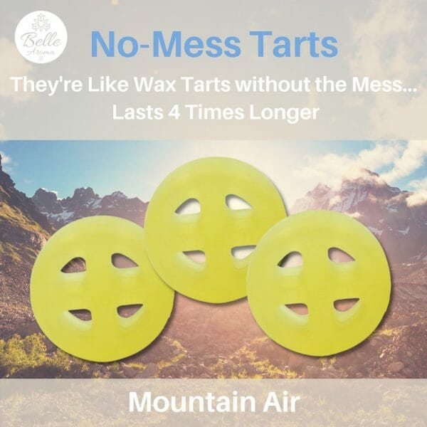 Mountain Air No Mess Tart by Belle Aroma