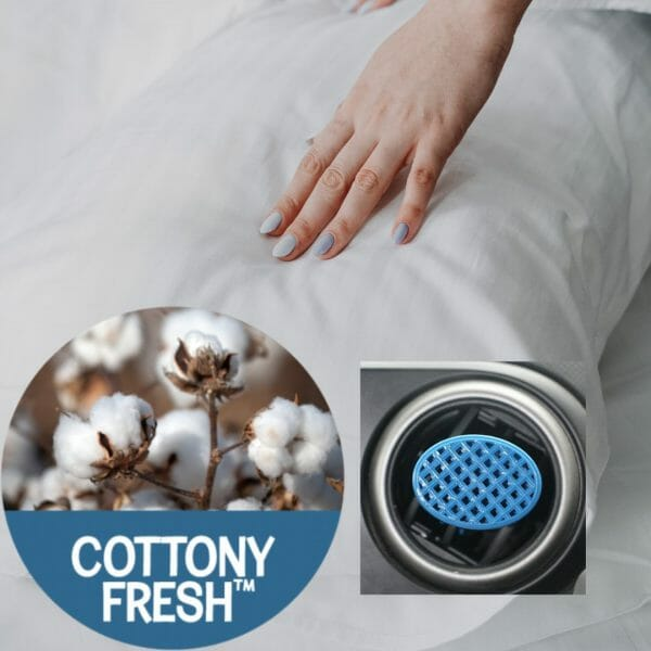 You are Chic - Cottony Fresh Aromables Portable Air Freshener
